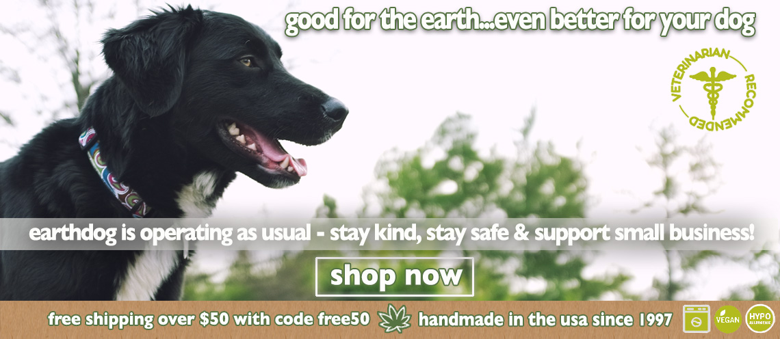fall banner from earthdog